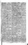 Penny Despatch and Irish Weekly Newspaper Saturday 02 September 1865 Page 7