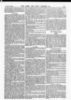 Army and Navy Gazette Saturday 08 November 1884 Page 7