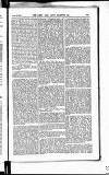 Army and Navy Gazette Saturday 24 October 1885 Page 9