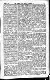 Army and Navy Gazette Saturday 13 February 1886 Page 11