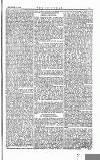 The Irishman Saturday 16 September 1865 Page 9