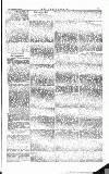 The Irishman Saturday 13 September 1879 Page 13