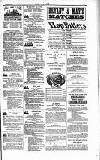 Dublin Weekly Nation Saturday 03 February 1883 Page 15