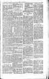 Dublin Weekly Nation Saturday 04 April 1885 Page 3