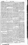 Dublin Weekly Nation Saturday 19 December 1885 Page 11