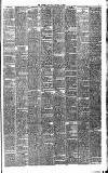 Warder and Dublin Weekly Mail Saturday 01 January 1876 Page 5