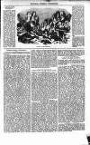 Illustrated Berwick Journal Saturday 06 October 1855 Page 9