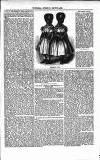 Illustrated Berwick Journal Saturday 03 November 1855 Page 11