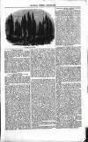 Illustrated Berwick Journal Saturday 24 November 1855 Page 11