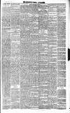 Chepstow Weekly Advertiser Saturday 17 February 1883 Page 3