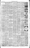 Chepstow Weekly Advertiser Saturday 22 February 1890 Page 2