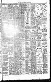Dublin Daily Nation Saturday 05 June 1897 Page 7