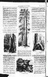 Illustrated Weekly News Saturday 14 February 1863 Page 4