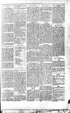 Beverley Echo Tuesday 04 September 1894 Page 3