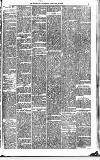 Midland Examiner and Times Saturday 06 February 1875 Page 5