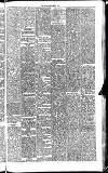 Midland Examiner and Times Saturday 20 March 1875 Page 5