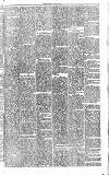 Midland Examiner and Times Saturday 10 April 1875 Page 3