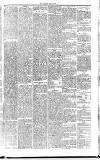 Midland Examiner and Times Saturday 17 April 1875 Page 5