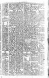 Midland Examiner and Times Saturday 24 April 1875 Page 5