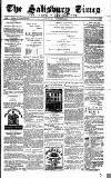 The Salisbury Times Saturday 16 October 1880 Page 1