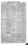 The Salisbury Times Saturday 12 March 1881 Page 3