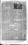 Jarrow Express Friday 13 September 1889 Page 7