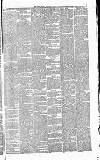 Essex Herald Tuesday 23 February 1869 Page 3