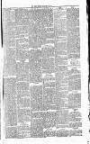 Essex Herald Tuesday 23 February 1869 Page 5