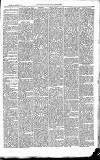 East & South Devon Advertiser. Saturday 10 January 1874 Page 3
