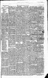 East & South Devon Advertiser. Saturday 07 March 1874 Page 3