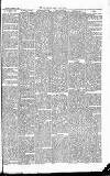 East & South Devon Advertiser. Saturday 10 October 1874 Page 7