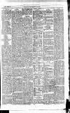 East & South Devon Advertiser. Saturday 12 June 1875 Page 3