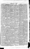 East & South Devon Advertiser. Saturday 12 June 1875 Page 7