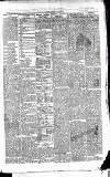 East & South Devon Advertiser. Saturday 04 September 1875 Page 3