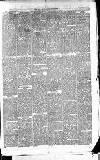 East & South Devon Advertiser. Saturday 04 September 1875 Page 7