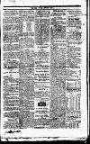 Mayo Constitution Thursday 22 May 1828 Page 3