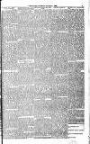 Globe Tuesday 07 March 1893 Page 3