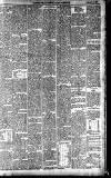 Dartmouth & South Hams chronicle Friday 12 January 1900 Page 4