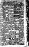 Weekly Irish Times Saturday 17 February 1900 Page 19