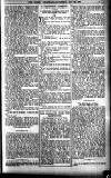Sheffield Weekly Telegraph Saturday 28 October 1899 Page 7