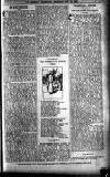 Sheffield Weekly Telegraph Saturday 28 October 1899 Page 19