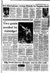 Irish Independent Friday 09 January 1987 Page 13