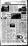 Irish Independent Friday 29 July 1988 Page 19