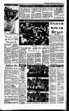 Irish Independent Tuesday 03 January 1989 Page 11