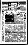 Irish Independent Tuesday 03 January 1989 Page 15