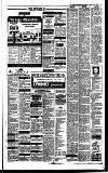 Irish Independent Tuesday 03 January 1989 Page 17
