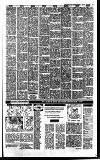 Irish Independent Tuesday 03 January 1989 Page 19