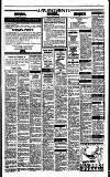 Irish Independent Thursday 05 January 1989 Page 17