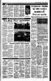 Irish Independent Thursday 02 February 1989 Page 15