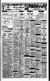 Irish Independent Thursday 02 February 1989 Page 17